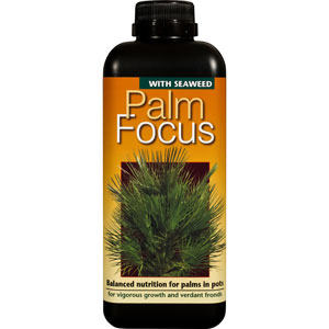 Palmnäring - Palm Focus, 500ml-