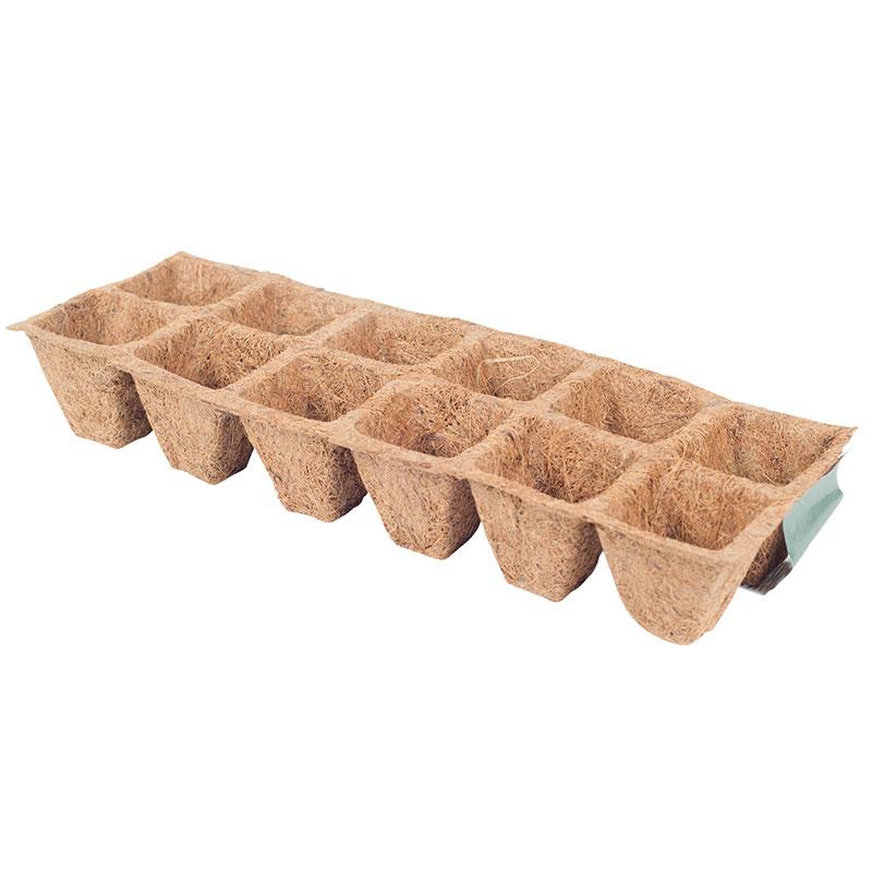 Kokosbrätte med 2x6 pluggar