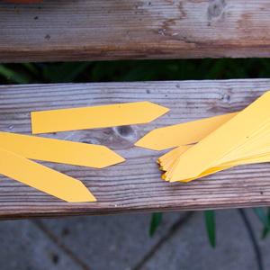 Plantetiketter 50-pack - Orange-Växtetiketter, orange