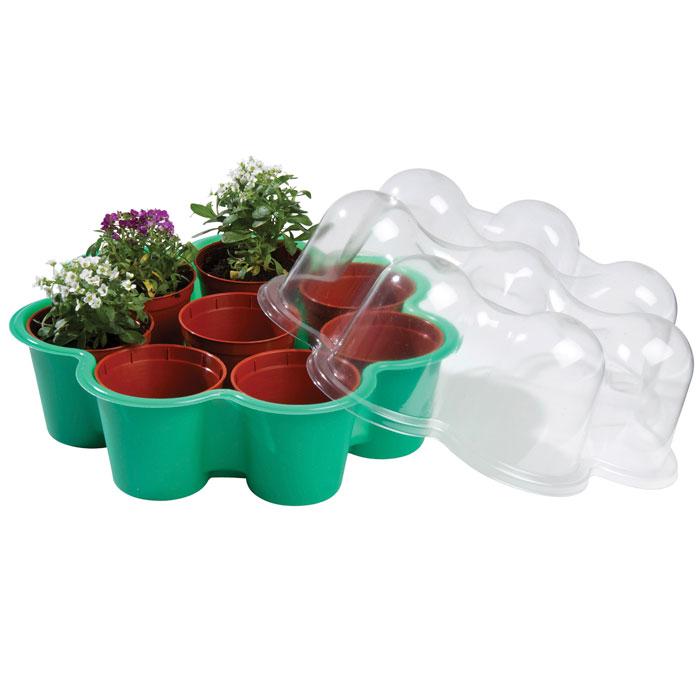 Blomformat miniväxthus för fönsterbrädan - grönt-miniväxthus format som en blomma