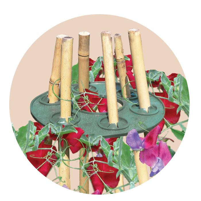 Wigwam - plantstödshållare-Wigwam plantstöd