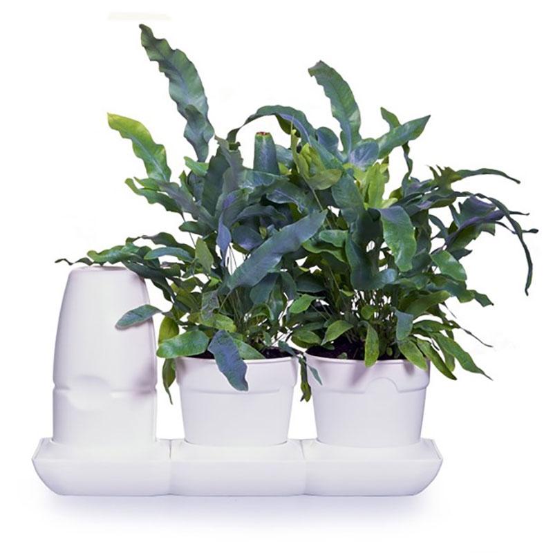 Minigarden Basic S Pots vit
