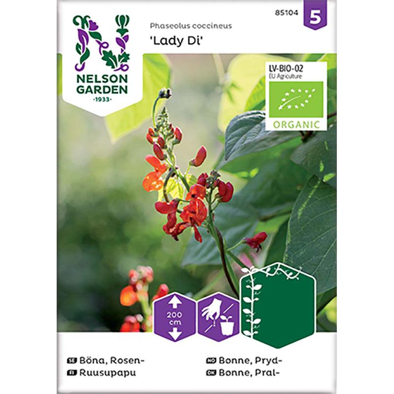 Frö till Blomsterböna 'Lady Di', ekologisk
