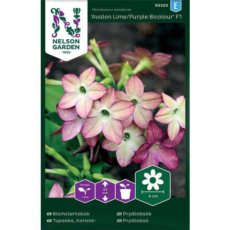 Frö till Blomstertobak 'Avalon Lime/Purple' F1