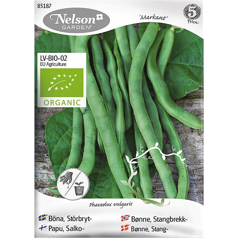 Ekologiskt frö till störbrytböna. Markant