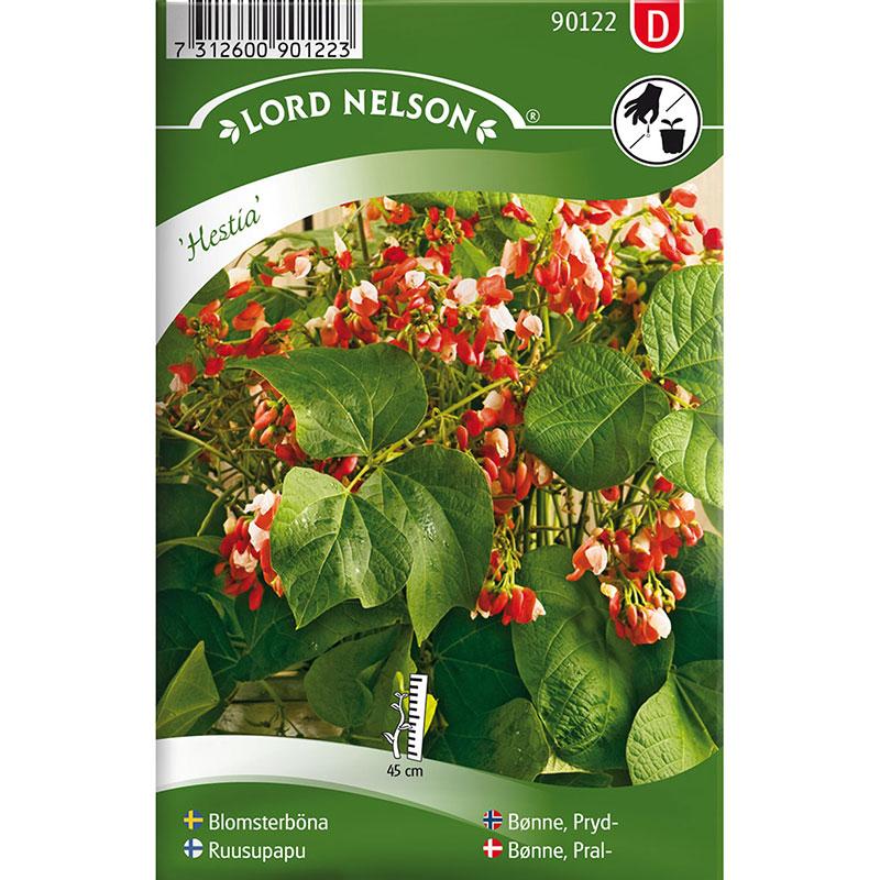 Frö till Blomsterböna, Phaseolus coccineus 'Hestia'
