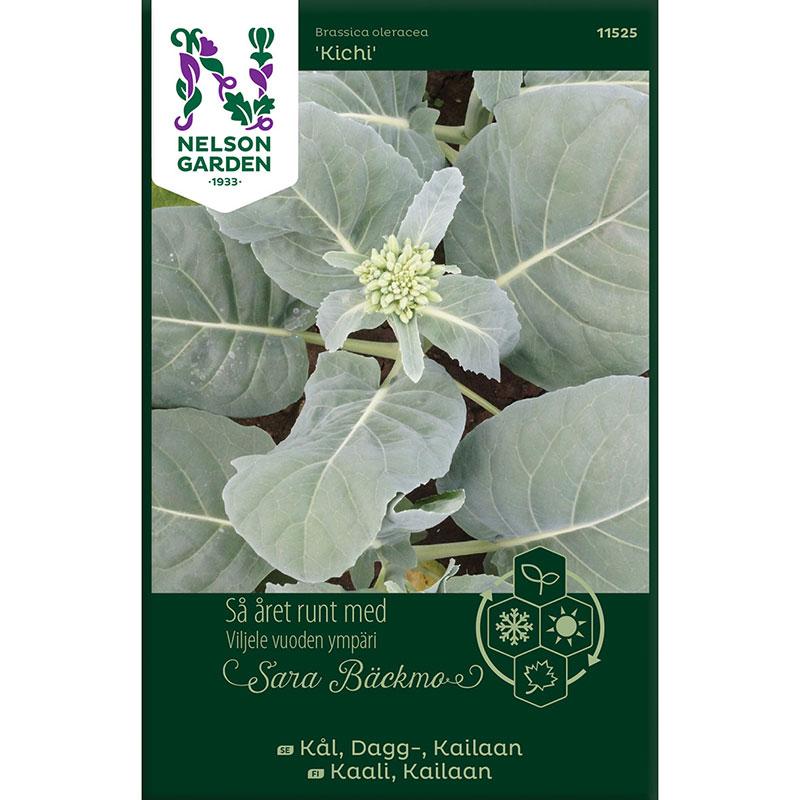 Frö till Daggkål, Brassica oleracea 'Kailaan Kichi'
