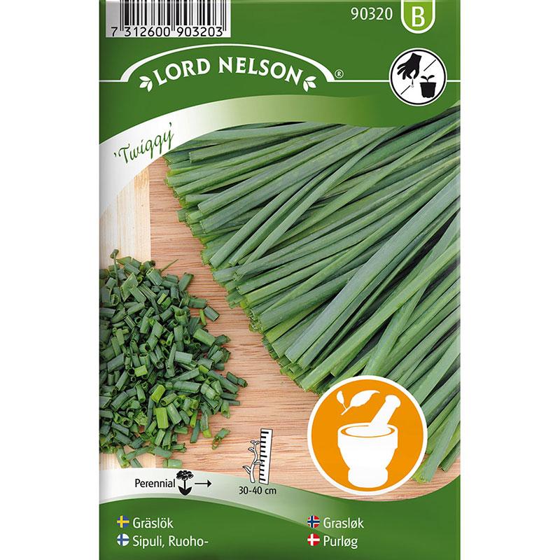 Frö till Gräslök, Allium schoenoprasum 'Twiggy'
