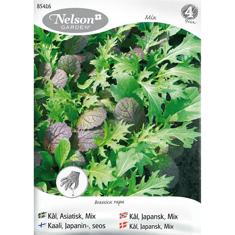 Frö till Kål, Brassica rapa, asiatisk mix