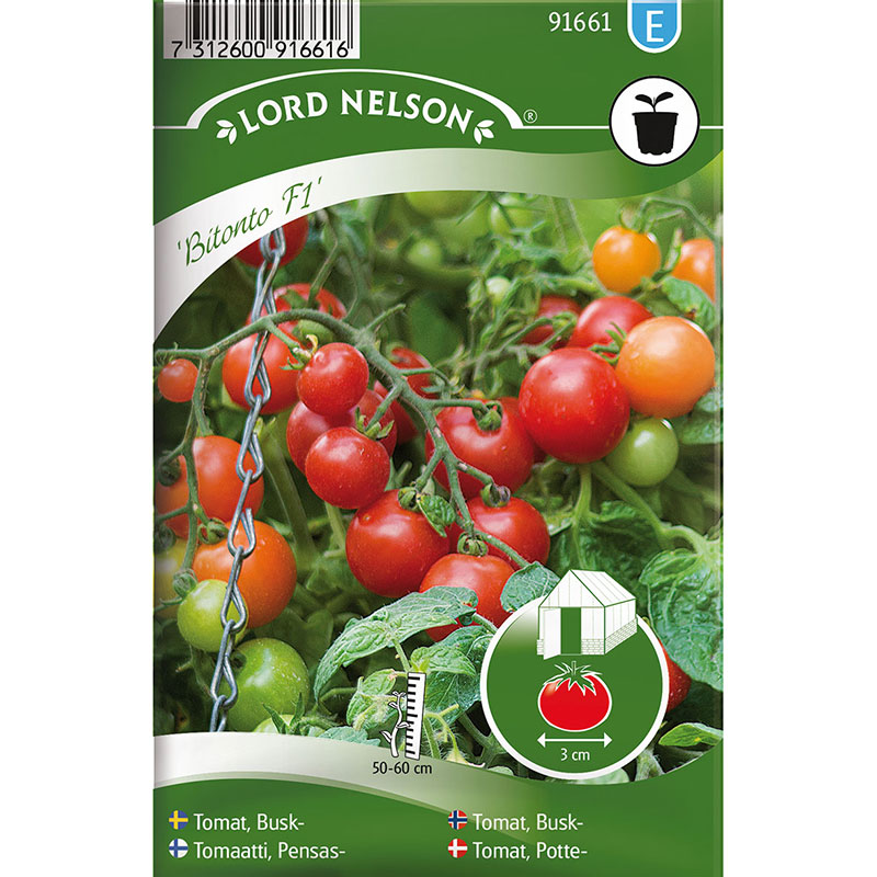 Frö till Kruktomat, Solanum lycopersicum 'Bitonto' F1
