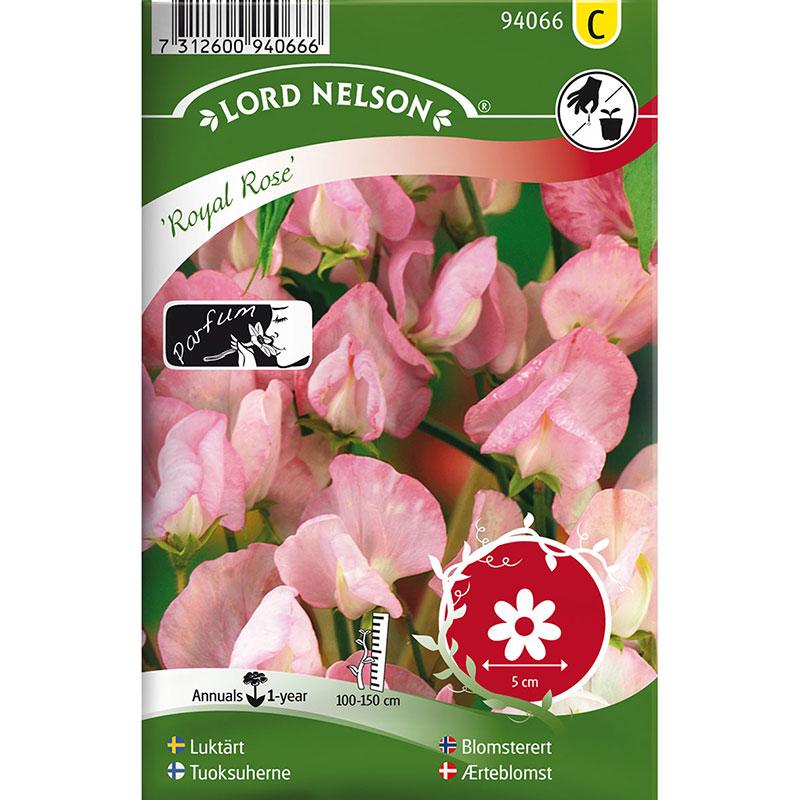 Frö till Luktärt, Lathyrus odoratus L. 'Royal Rose'