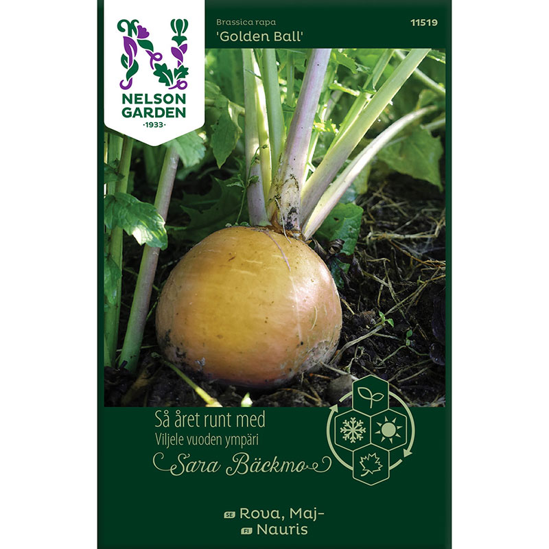 Frö till Majrova, Brassica rapa 'Golden Ball'