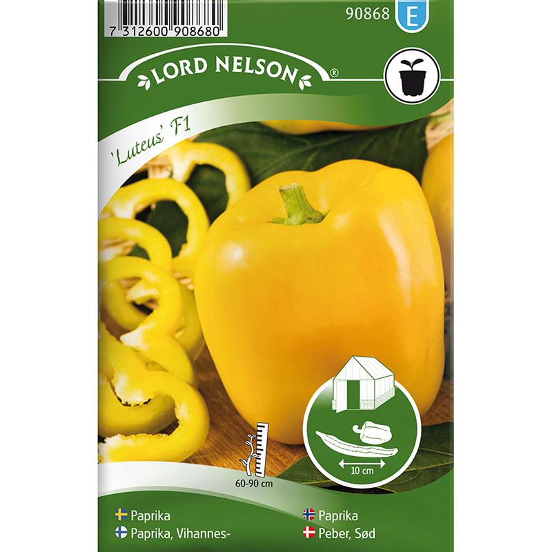 Frö till Paprika, Capsicum annuum 'Luteus' F1