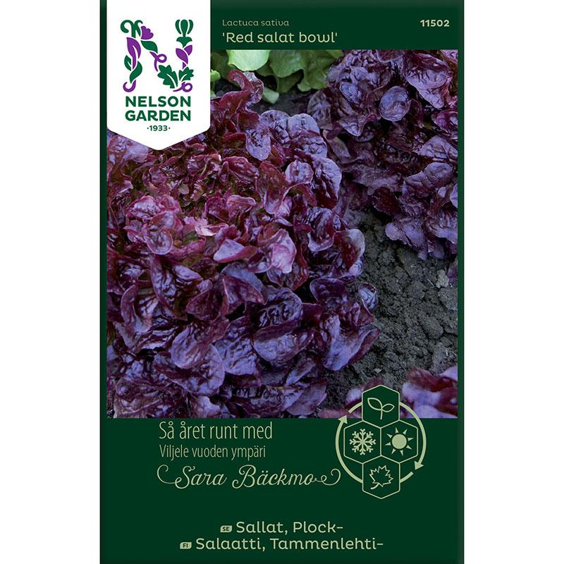 Frö till Plocksallat, Lactuca sativa 'Red salad bowl'