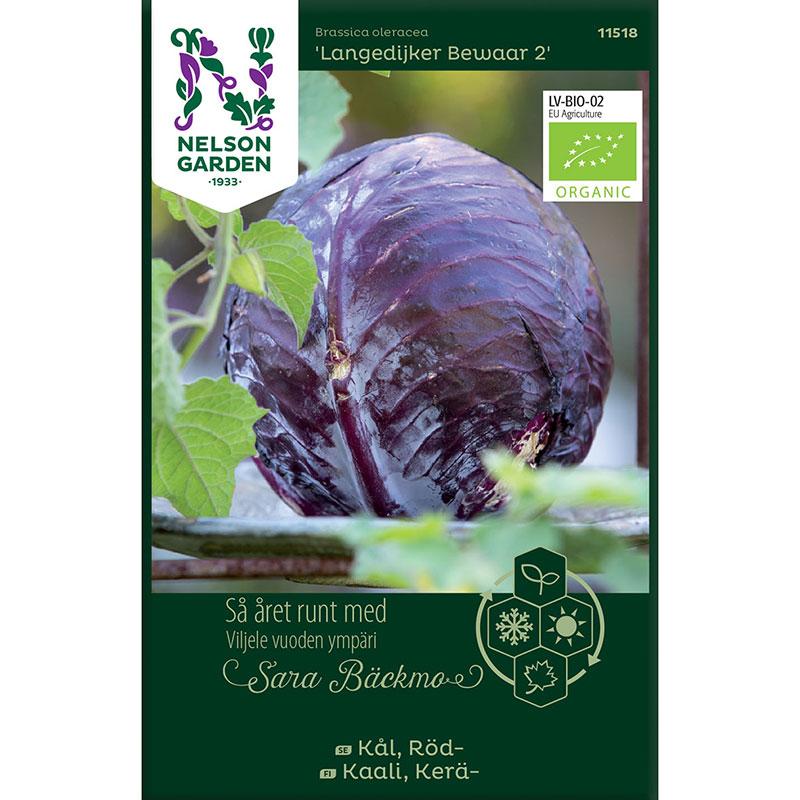 Frö till Rödkål, Brassica oleracea 'Langedijker Bewaar 2'