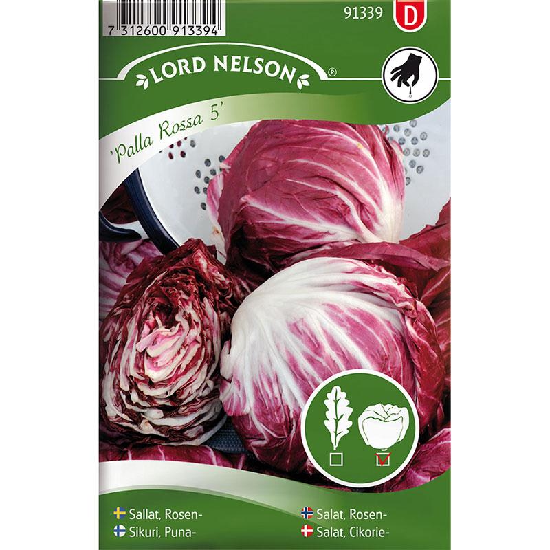 Frö till Rosensallat, Cichorium intybus 'Palla Rossa 6'