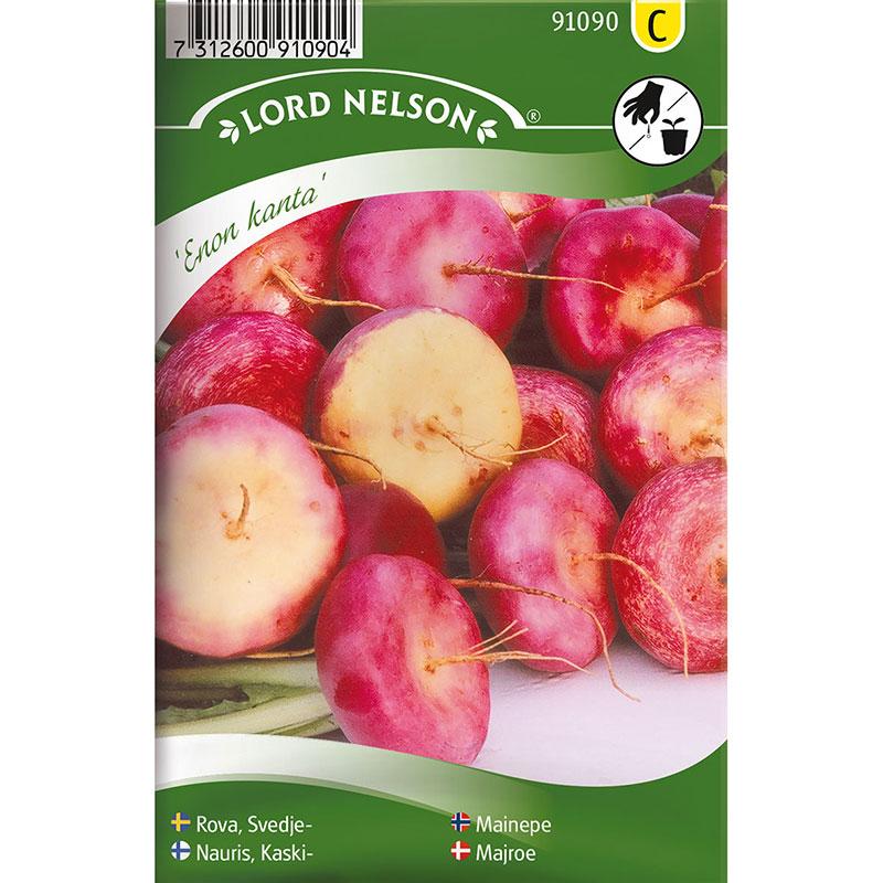 Frö till Rova, Brassica rapa L. 'Enon kanta'