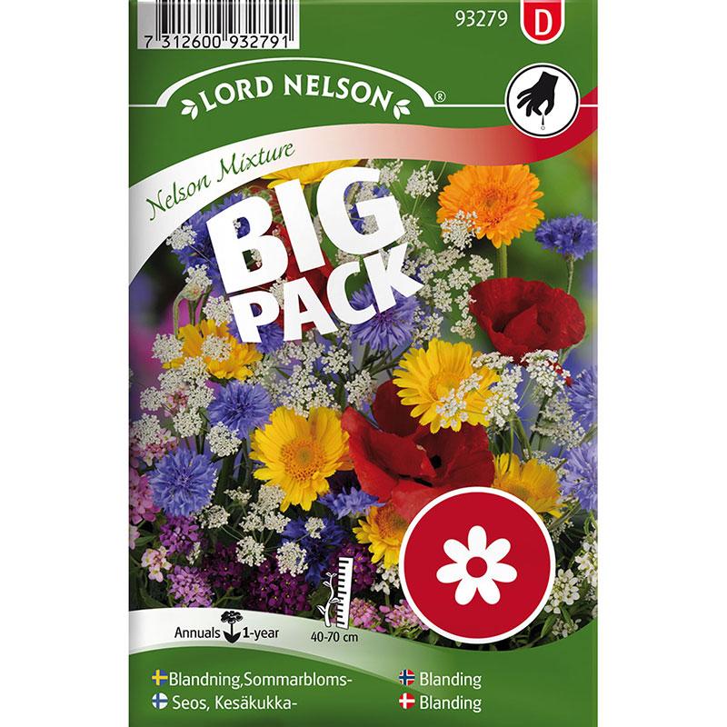 Frö till Sommarblommor, mix, Big Pack