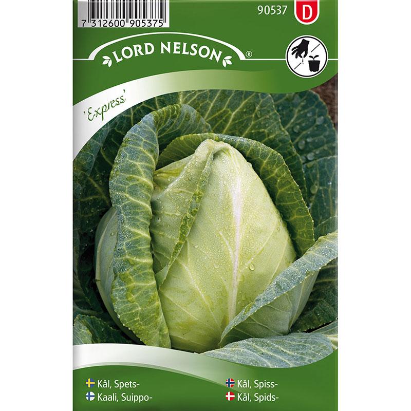 Frö till Spetskål, Brassica oleracea 'Express'