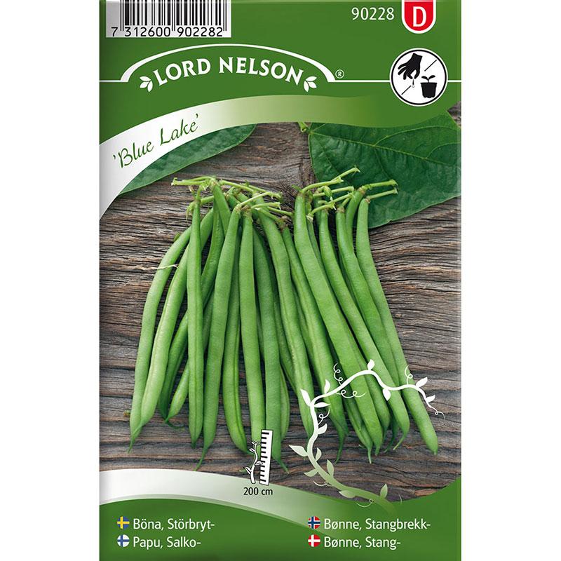 Frö till Störbrytböna, Phaseolus vulgaris 'Blue Lake'
