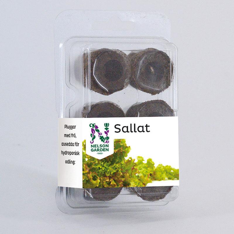 Hydroponisk, Plugg med frö, Sallat