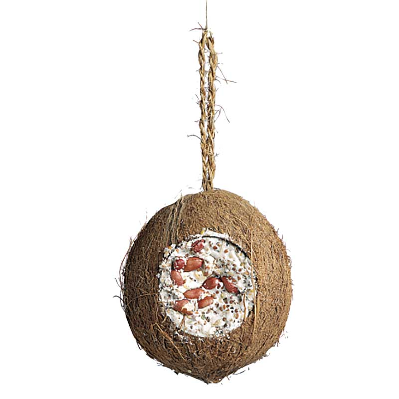 Kokosnöt hel talg frön 700g