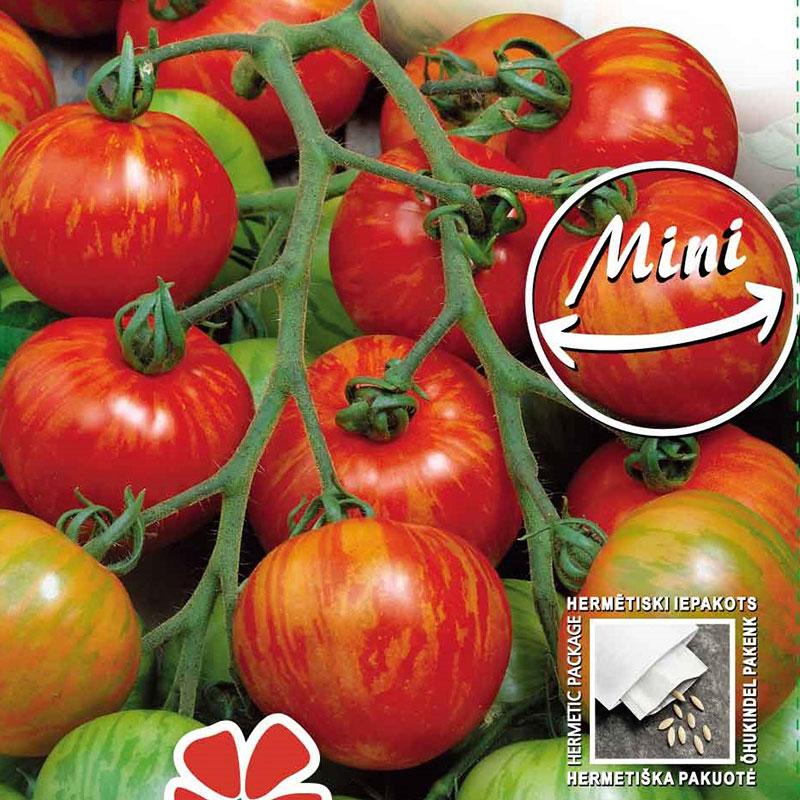 Fröer till tomat tomato, duo
