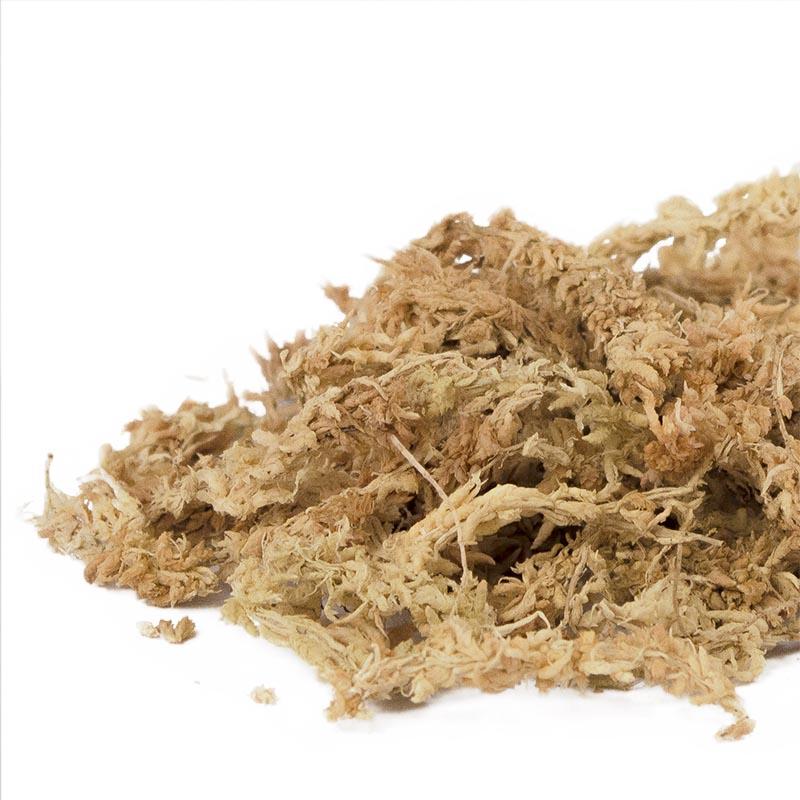 Sphagnummossa naturell-Sphagnummossa för okideer och plantering