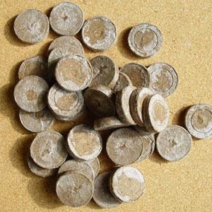 Torvbriketter, Jiffy  7, 3 cm-Små torvbriketter för plantering av fröer och sticklingar