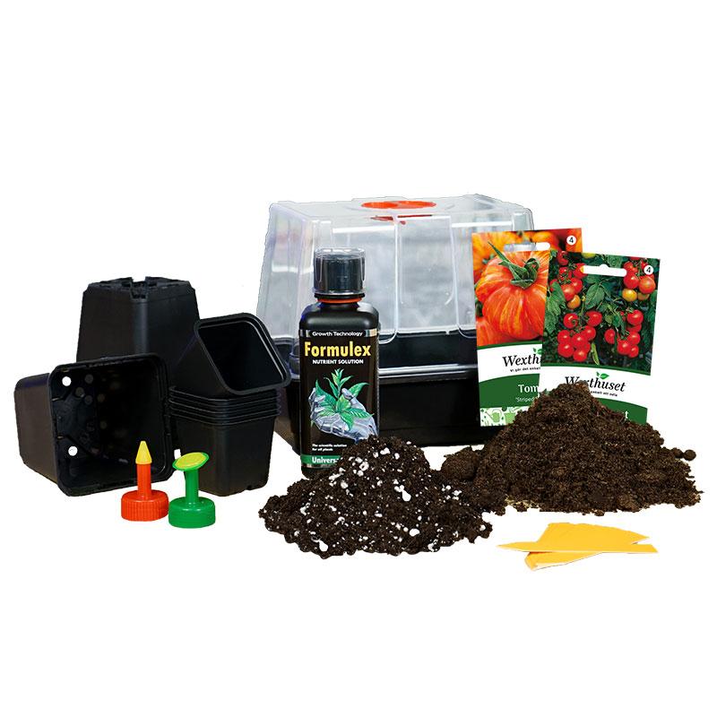 Lilla odlingspaketet för tomater