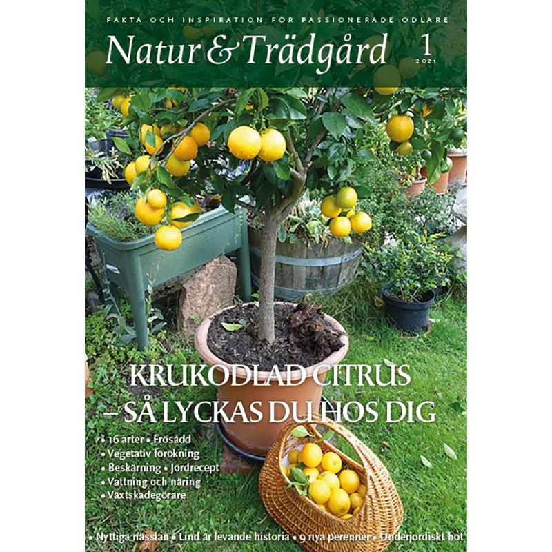 Natur & Trädgård nr 4/2020