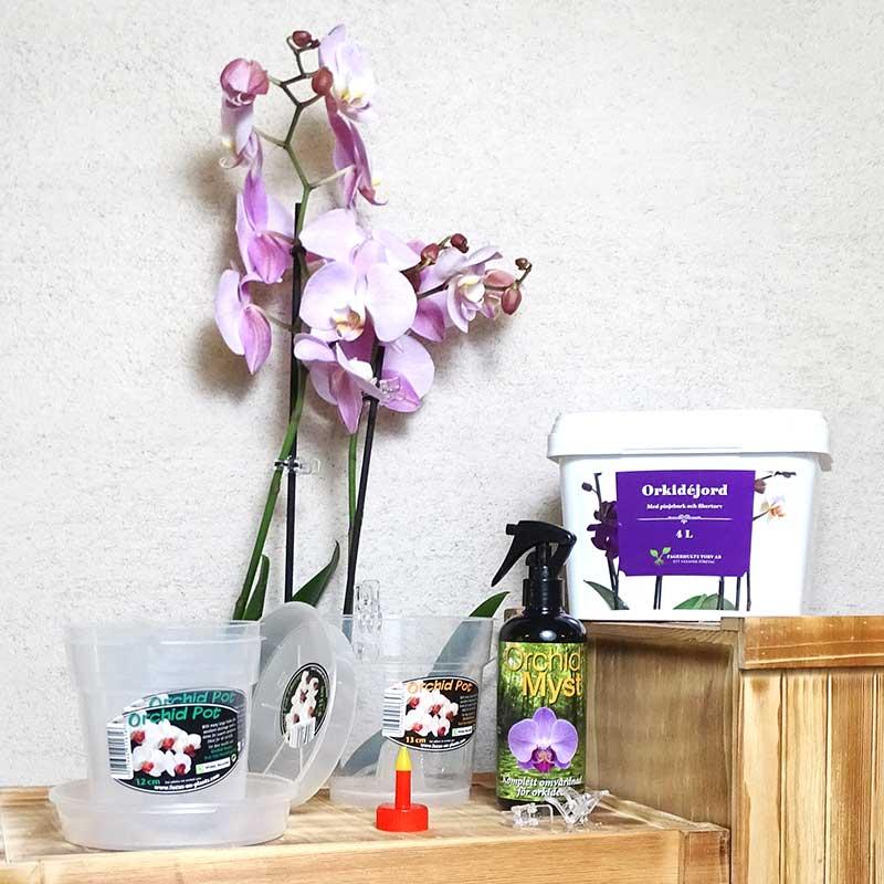 Omplanteringskit för orkidéer