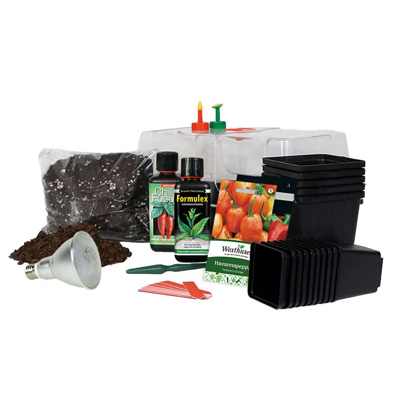 Chiliodlingspaket med allt du behöver för lyckad odlingsstart