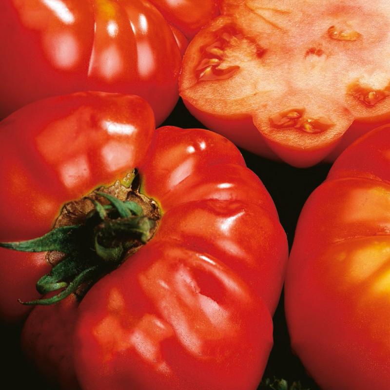 Fröer till Tomat - Costoluto Fiorentino