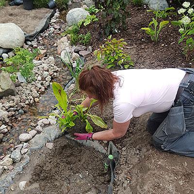Redskap och material för trädgårdsplantering