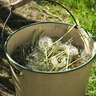 Redskap för bekämpning och rensning av ogräs