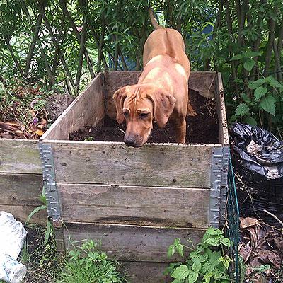 Komposter, behållare och komposthjälpmedel
