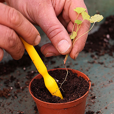 Tillbehör för frösådd och lökplantering