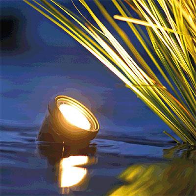 Belysning till trädgårdsdammar