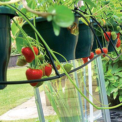 Bevattningsystem för trädgård, balkong och växthus