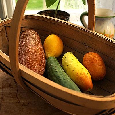 Frö till gurka och gurkväxter