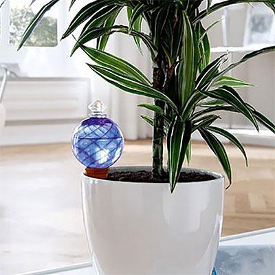 Lösningar för långtidsbevattning av växter