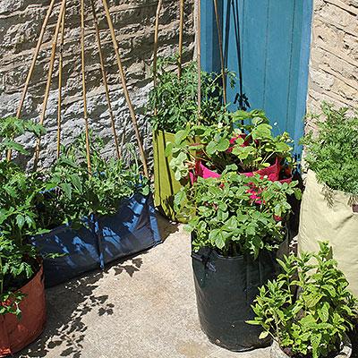 Odlingssäckar för odling på balkong och terrass