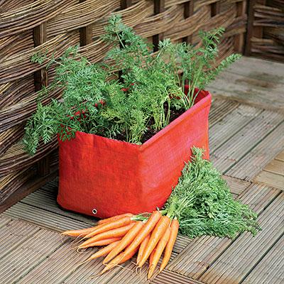 Odlingssäckar för köksväxter