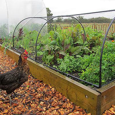 Växtskydd och barriärer mot ohyra och skadegörare
