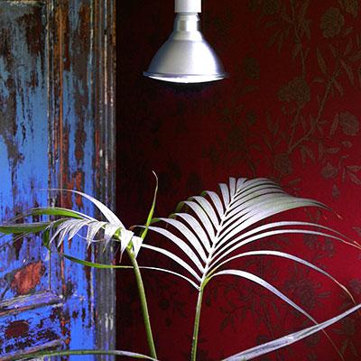 Växtlampa för stödbelysning av prydnadsväxter inomhus