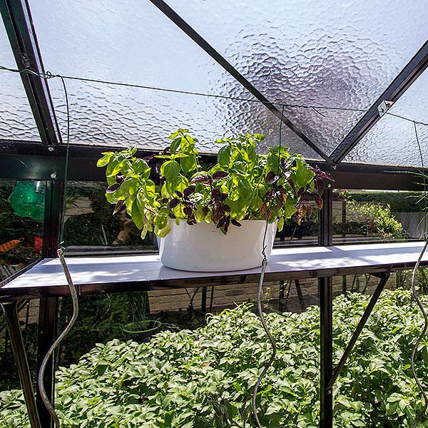 Bord och hyllor till växthus