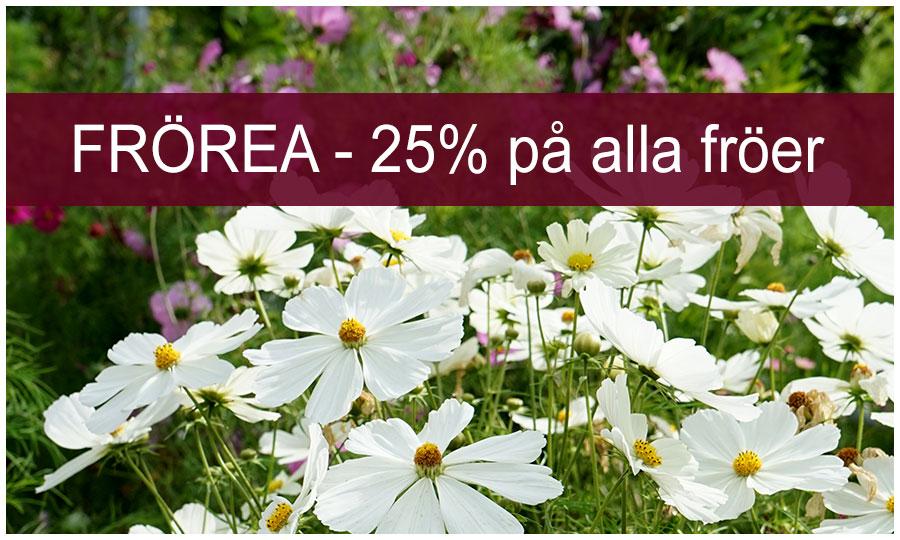 25% rabatt på fröer fraktfritt