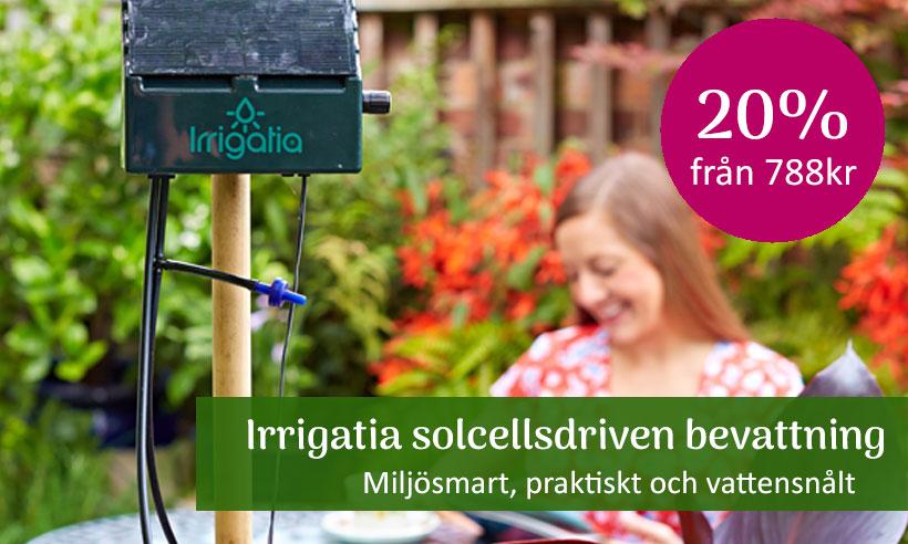 Solcellsdriven bevattning, Irrigatia 20%