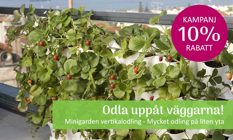 Minigarden vertikalodling - Kampanj 10%